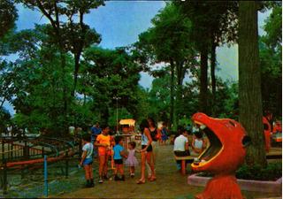 Yn-4602- Postal Goiania, G O- Parque Mutirama