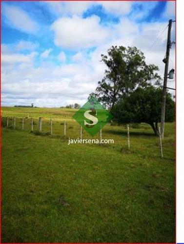 Venta De Campo En Treita Y Tres, 70 Hectareas Con Casa. - Ref: 168050