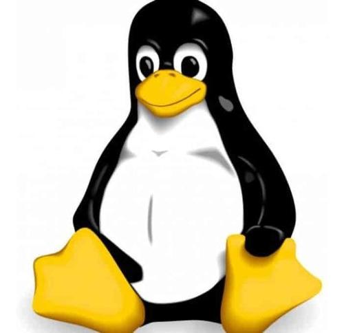 Imagem 1 de 4 de Suporte Em Servidores Linux