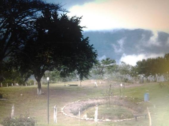 Finca En Venta Trincheras Naguanagua