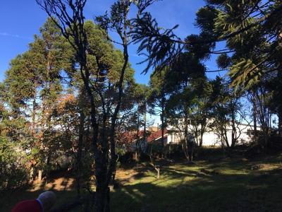 Terreno Em São Cristóvão - Cs36006691