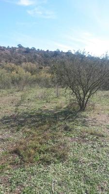 Campo En Cruz Del Eje De 950 Ha Con Luz Y Agua