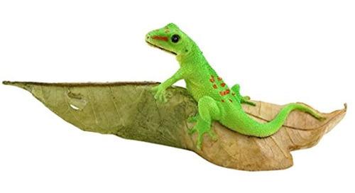 Imagen 1 de 4 de Coleccion Top Miniature Fairy Garden Y Terrarium Day Gecko