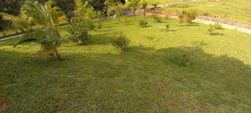 Imagem 1 de 14 de Graça De Chácara Em Salesópolis!!!