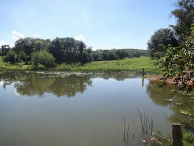 Fazenda A Venda Em Coxim - Ms (pecuária E Agricultura) - 885