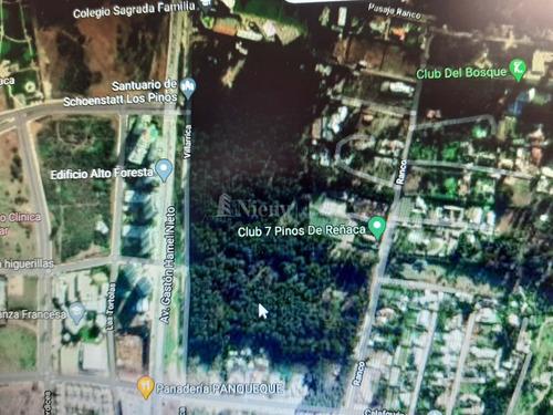 Sitio Y/o Terreno En Venta Los Pinos De Reñaca, Reñaca
