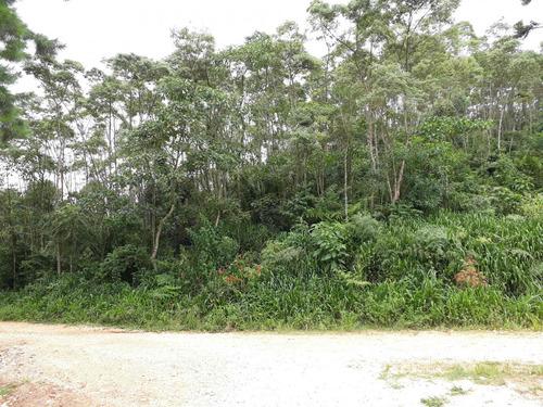 Chácara/fazenda/sítio À Venda Com 30000m² Por R$ 250.000,00 No Bairro Pacotuba - Almirante Tamandare / Pr - Mch-0010