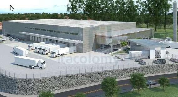 Ref: 2764 Galpão Novo Com 13.000m² De Área Construída Para L - 2764