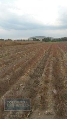 Terreno En Venta, Huejotzingo, Puebla
