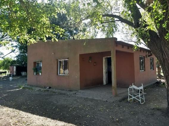 Campo En Venta En Loma Verde