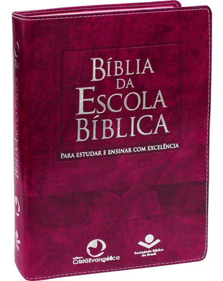 Bíblia De Estudo Da Escola Bíblica Dominical
