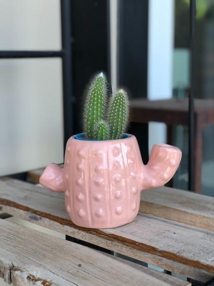 Maceta Cerámica Cactus