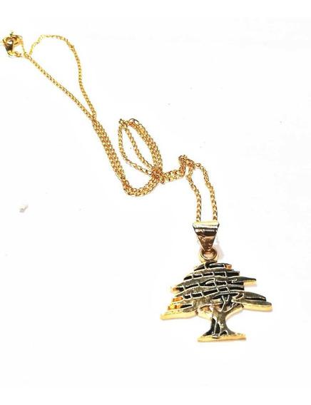 Cedro Libanes Chapa De Oro Con Cadena También Chapa De Oro