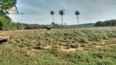 Fazenda Com 6 Dormitórios À Venda, 1312200 M² Por R$ 5.000.000,00 - Zona Rural - Anápolis/go - Fa0001