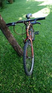 Bicicleta Blue Bike Rodado 24