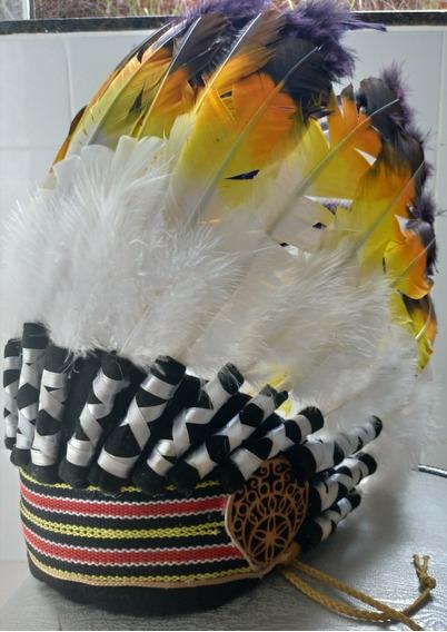 Cocar De Índio/indígena Nativo Americano Colorido