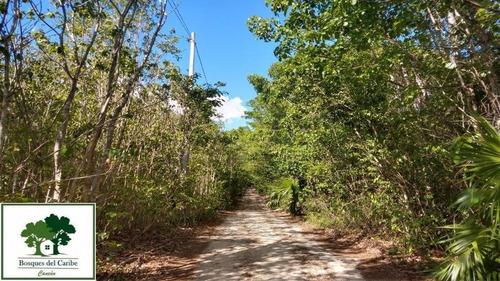 Imagen 1 de 8 de Terreno En Venta Cancun 4,900m2   P2227