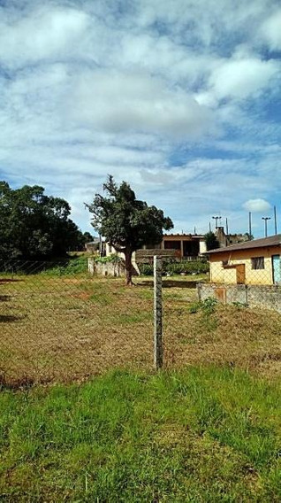 Área Para Venda Em Lapa, Contenda - 845_2-712848