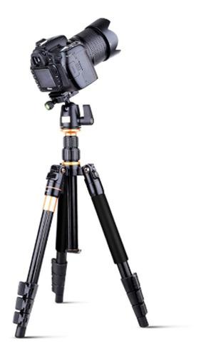 Tripé Monopé Q555 Para Câmera Com Cabeça Profissional