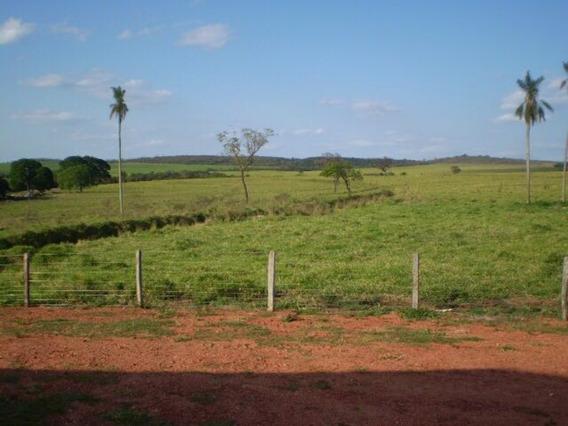 Fazenda Mato Grosso Do Sul - 593 - 32926919