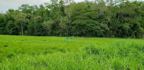 Terreno À Venda, 1169 M² Por R$ 274.000,00 - Parque Residencial Jequitibá - Jacareí/sp - Te0165