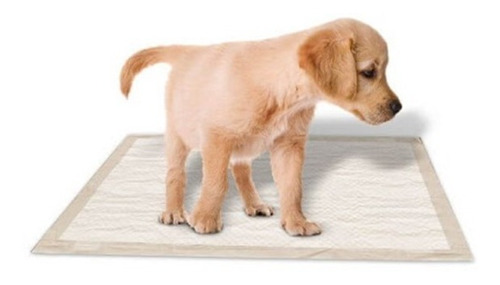 Paños Adiestramiento Alfombra Sanitaria Cachorro 30% Off!!