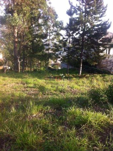 Imagem 1 de 7 de Terreno Residencial À Venda, Residencial Euroville, Carapicuíba - Te0802. - Te0802