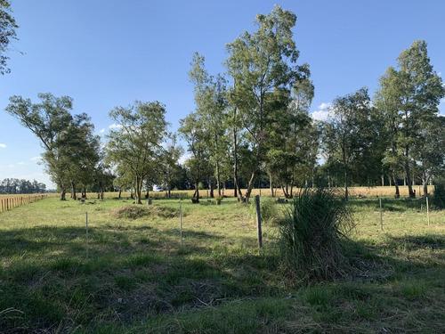 Terreno En Venta En La Plata Ruta 6 Esq 429 Bis Dacal Bienes Raices