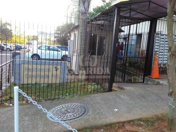 Apartamento - Vila Nova - Ref: 201288 - V-201400