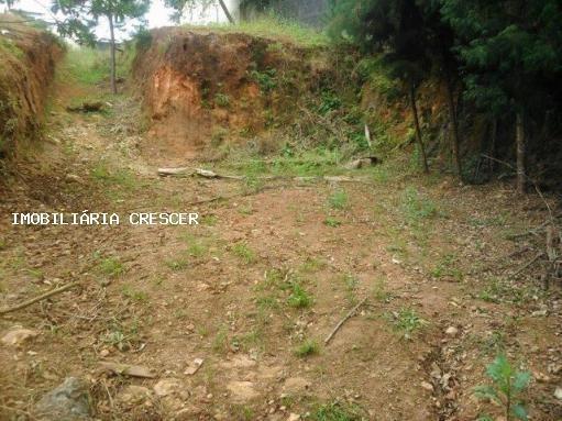 Terreno Para Venda Em Mogi Das Cruzes, Vila Oliveira - T005_2-149045