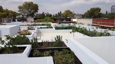 Con Roof Garden Y Bodega