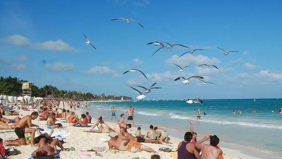 Vive En Playa Del Carmen Depto. A 2 Cuadras De Mamitas