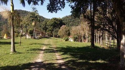 Fazenda Rural À Venda, Turvo Do Eta, Eldorado. - Fa0131