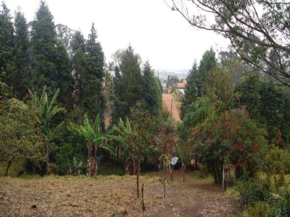 Área De 22855m2 Jundiai No Bairro Do Jundiai Mirim - Ar0009 - 33515178