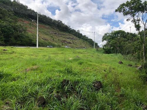 Imagem 1 de 9 de Terreno À Venda, 3317 M² Em  Santo Antônio De Lisboa - Te0680