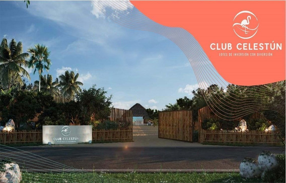 Lotes De Inversión En Club De Playa Celestún, Puerto Celestún, Yucatán México Av