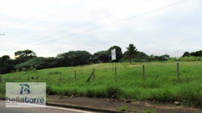 Raridade, Área 11.000m² Plana, Com 80m Frente (industrial/comercial A 200m Da Av. Industrias - Araucária - Te0261