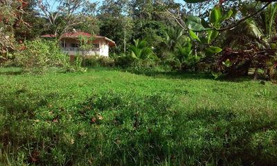 Se Vende Terreno En Bocas Del Toro, Cuenta Con Muelle 17-63