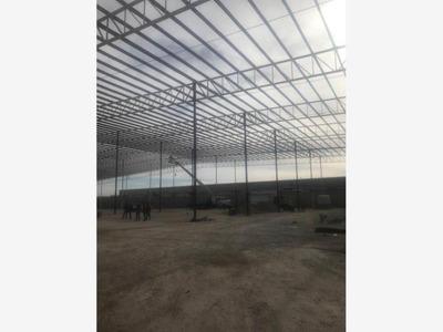 Bodega En Renta En Ferropuertos, Torreón