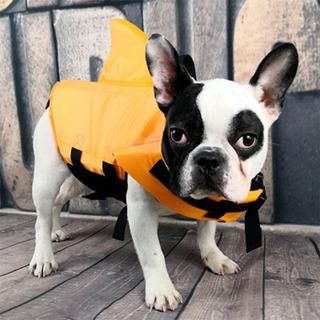 Chaleco Salvavidas Para Perros Grandes Y Pequeños Bulldog F