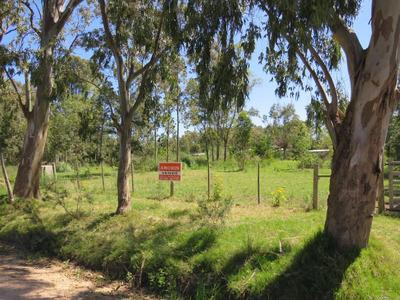 Vendo Terrenos En Manantiales Y El Tesoro