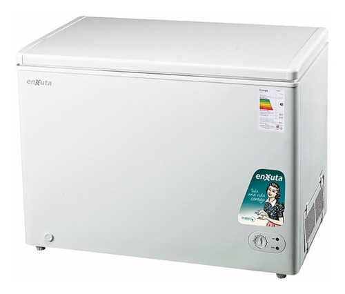 Freezer Horizontal Enxuta 300 Litros Puerta Ciega Y Vidrio