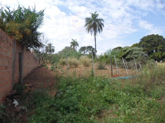 Rural Para Venda, 0 Dormitórios, Piteiras - Mogi Mirim - 515