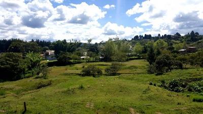 Lotes En Venta Santa Elena 585-23223