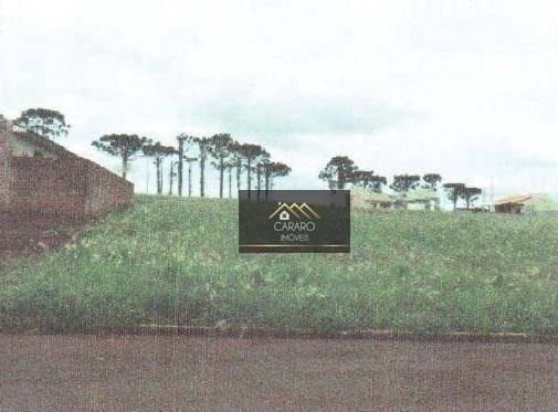 Terreno Residencial À Venda, Centro, Nova Aurora. - Te0024