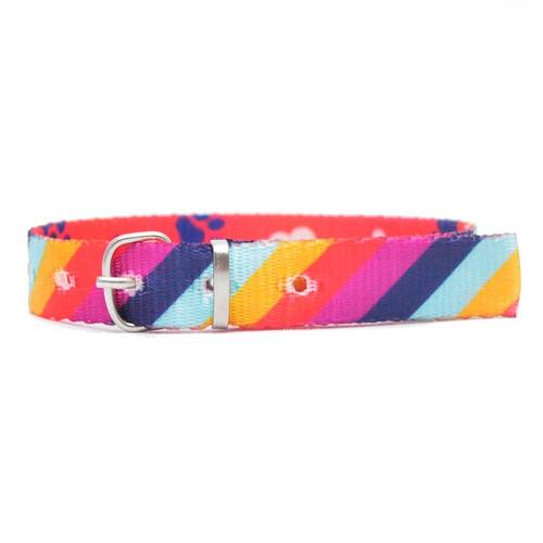 Collar Gato O Cachorro Diagonal Naranja