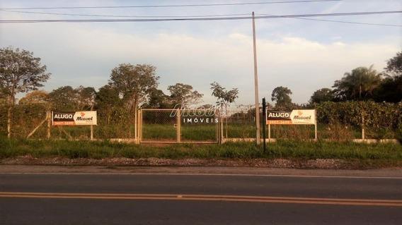 Terreno Comercial - Pau Queimado - Ref: 4782 - L-50438