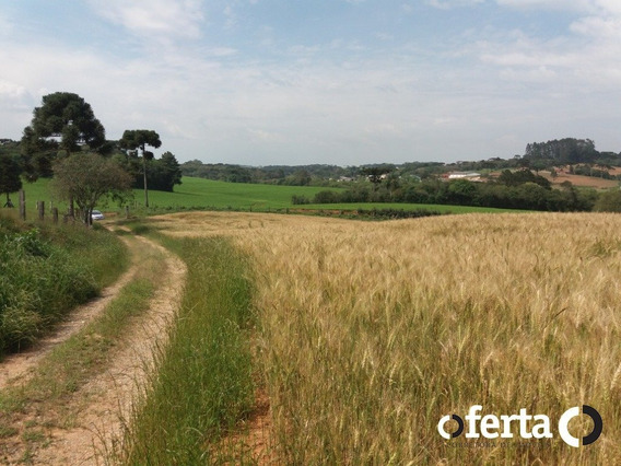 Chacara - Campo Redondo - Ref: 166 - V-166