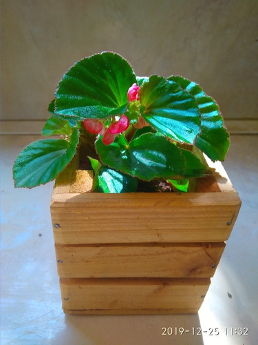 2 Huacal . Arreglos, Regalo, Caja. Gift Box. Exhibidor