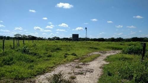 Rancho Con 336 Ha A Solo 3 Km De Dzilam Bravo